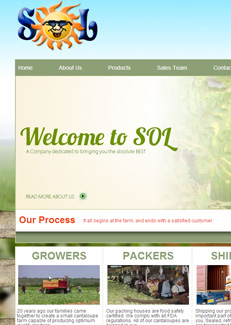Sol Marketing Group website